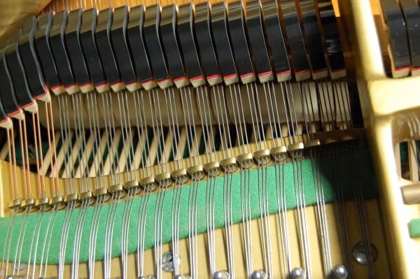 Flügel Schimmel Dämpfung und Saiten Detailansicht Pianohaus Landt